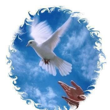 Les trois options pour faire naître le Christ dans notre coeur d'enfant de Dieu/ CIEL-ET-PIGEON